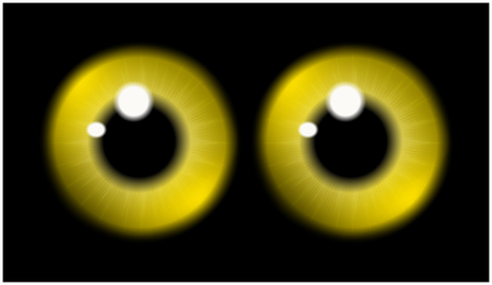 eye ball: Image of  yellow pupil of the eye, eye ball, iris eye. Realistic vector illustration isolated on black background.