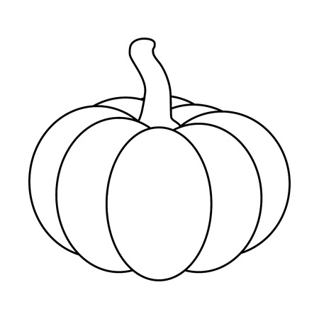 the contour: Halloween pumpkin outline, contour vector illustration isolated on white background.