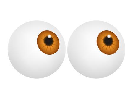 eyes hazel: Eyeball with hazel pupil, iris. Realistic human body part set. Vector illustration isolated on white background.