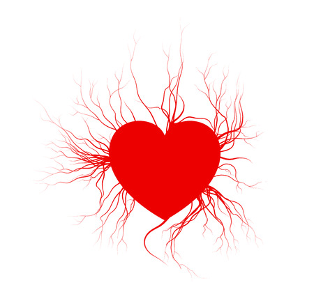 human veins with heart, red love blood vessels valentine design. Vector illustration isolated on white background