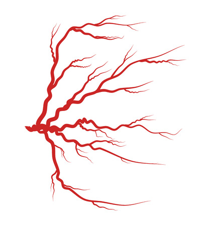 eye red: Eye vein red vector symbol icon design. Beautiful illustration isolated on white background
