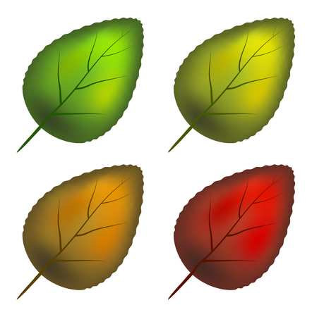 leaf set vector symbol icon design. Beautiful illustration isolated on white background Illustration