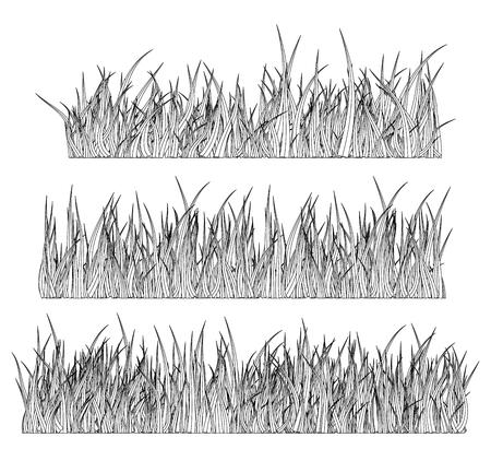 Diseño de icono de símbolo de vector de silueta de hierba. Hermosa ilustración aislada sobre fondo blanco Foto de archivo - 73023388