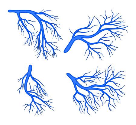human vessel blue set vector symbol icon design. Beautiful illustration isolated on white background 일러스트