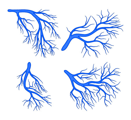 human vessel blue set vector symbol icon design. Beautiful illustration isolated on white background Vectores
