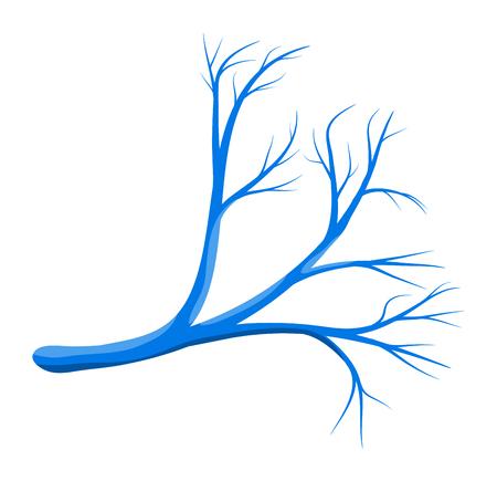 vascular: human vessel blue vector symbol icon design. Beautiful illustration isolated on white background