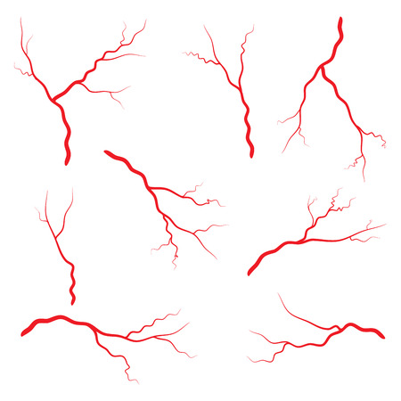 arterial: Human vein, vessel set vector symbol icon design. Beautiful illustration isolated on white background