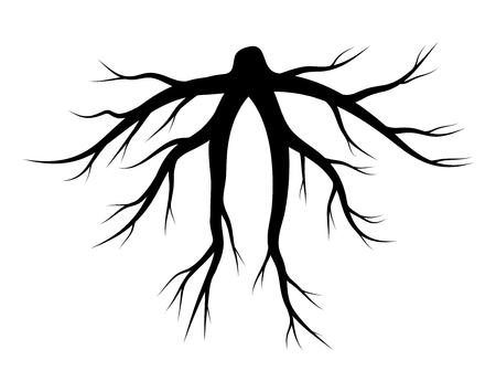 Diseño de icono de símbolo de vector de silueta de raíz. Hermosa ilustración aislada sobre fondo blanco