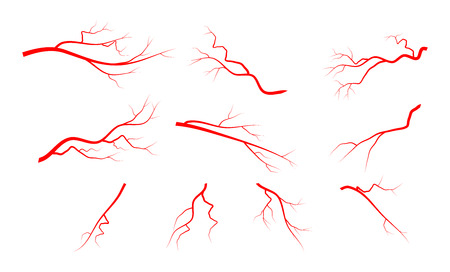 arterial: Red vein set vector symbol icon design isolated on white background