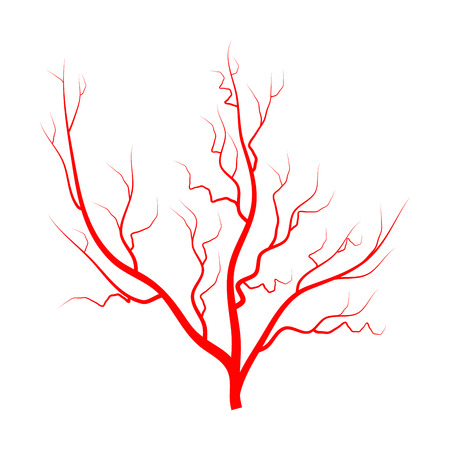 Eye vein vector symbol icon design isolated on white background