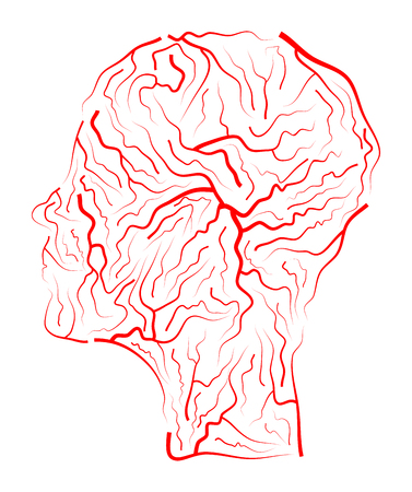 cerebral artery: Vein  human head vector symbol icon design. Beautiful illustration isolated on white background Illustration