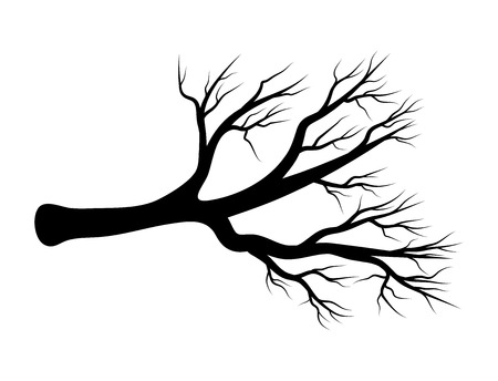 bare branch vector symbol icon design. Beautiful illustration isolated on white background Illustration