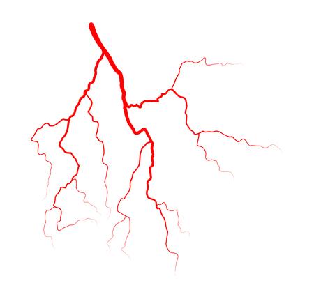 vein blood system vector symbol icon design. Beautiful illustration isolated on white background Illustration