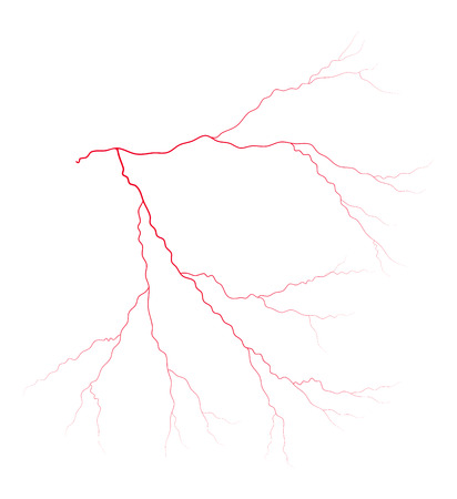 arterial: vein blood system vector symbol icon design. Beautiful illustration isolated on white background Illustration