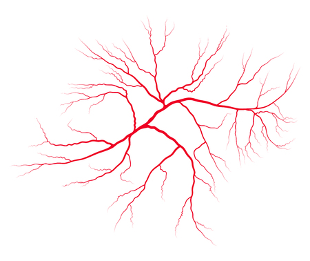 ader bloed systeem vector symbool pictogram ontwerp. Mooie illustratie geïsoleerd op een witte achtergrond