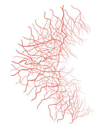 arterial: eye vein vector symbol icon design. Beautiful illustration isolated on white background