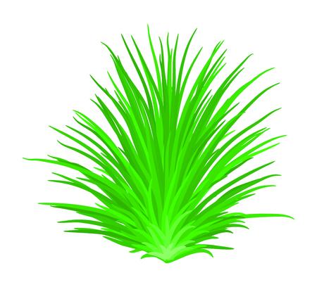 grass vector symbol icon design. Beautiful illustration isolated on white background Illustration