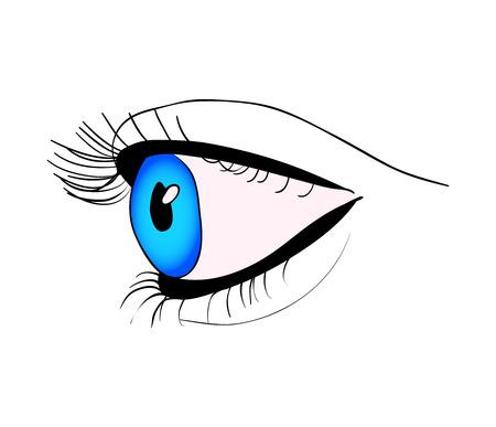 eye close up: human eye close up vector symbol icon design. Beautiful illustration isolated on white background Illustration