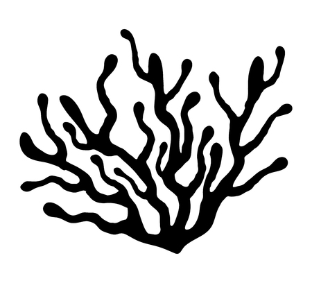 紅藻シルエット ベクトル シンボル アイコン デザイン。白い背景に分離された美しいイラスト