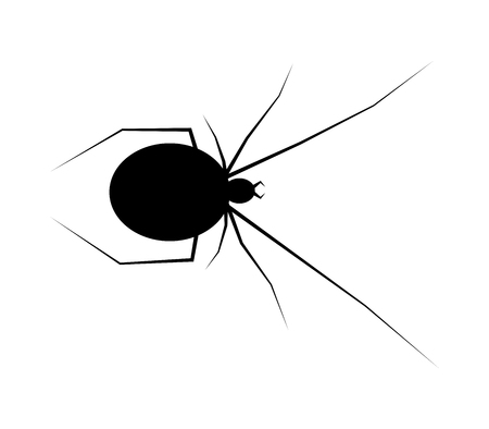 spider black widow silhouette vector symbol icon design. Beautiful illustration isolated on white background Illustration