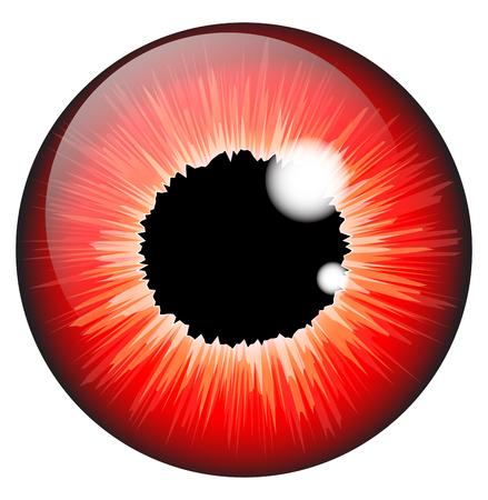 retina: red  iris eye realistic  vector set design isolated on white background Illustration