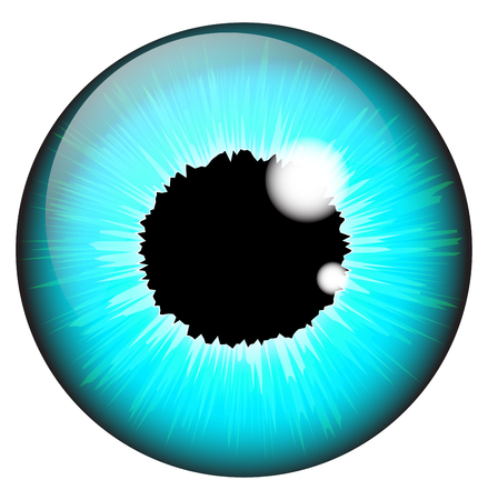 Diseño realista del vector del ojo del iris azul determinado aislado en el fondo blanco Ilustración de vector