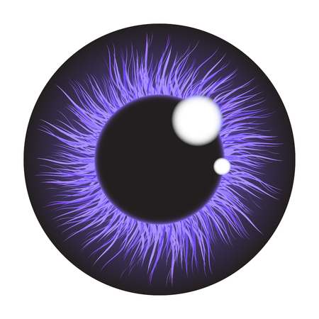 retina: Purple  iris eye realistic  vector set design isolated on white background Illustration