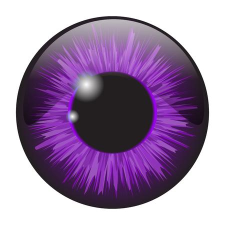 Purple  iris eye realistic  vector set design isolated on white background Illustration