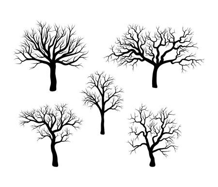 tree winter set design isolated on white background