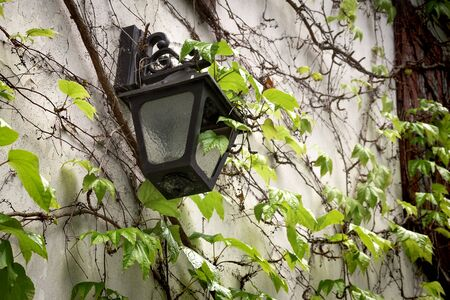 Old lantern hanging on a stone wall. antique retro lamp hang on home exterior. Grunge broken light source furniture wallpaper with copy space. Scene with green ivy climbing on old-fashioned villa.