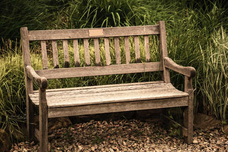 Vacant antique bench. Conception of nostalgia and loneliness. Alone grunge, old-fashioned furniture for sitting. Conceptual photography of solitude sadness and calmness. Melancholy scene at springtime Stockfoto