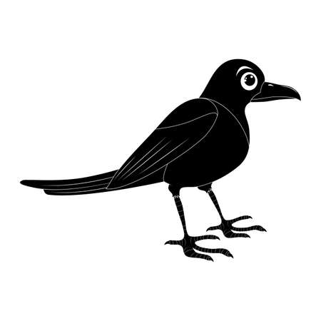 Magpie bird silhouette illustration set . Standing crow animal ornithology design. Vector shape isolated on white background. Ilustrace