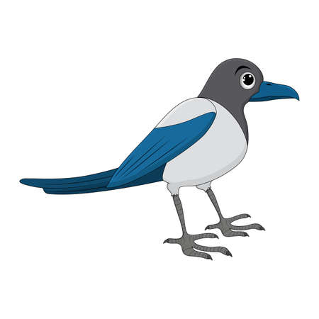 Magpie bird cartoon illustration. Standing crow animal ornithology design. Vector clip art isolated on white background.