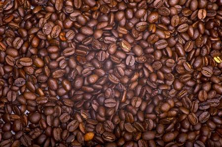 Koffie Bonen Achtergrond. Verse koffiebonen. Coffee Plantation.