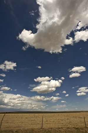 great plains: West Kansas State - American Great Plains. Dry Sunny Summer Day. Vertical Photo. Nature Photo Collection