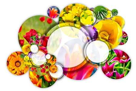composition: Floral Concept. Gardening Circle. Cool Composition of Flowers Circles on Solid White Background. Perfect for Landscaping Companies, Botanic Gardens or Flower Shops. Logo Space in the Middle Largest Circle.