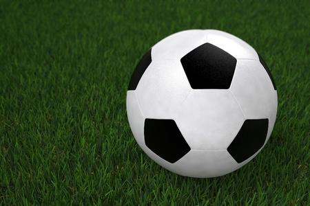 Foot Ball - Ball on the Field Grass. Sport Theme