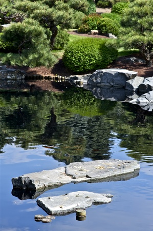 mugo: Small Garden Pond with Rocks and Japanese Garden. Vertical Garden Photography