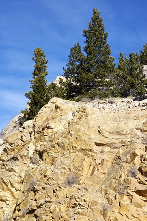 Rocky Cliff in Colorado   Vertical Photography