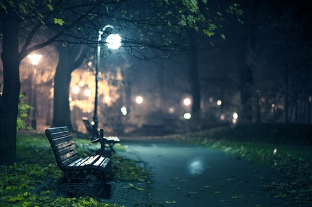 central europe: A Night in the Park  Late Autumn Night in the Park  Wood Benches and Park Alley  Horizontal Photography  Central Europe