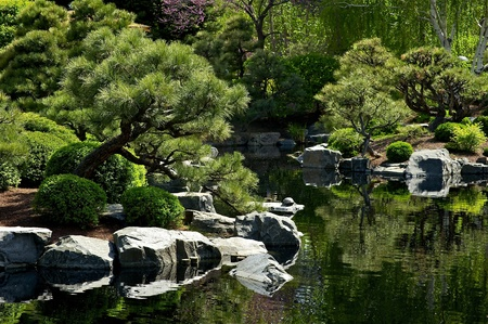 mugo: Beautiful Japanese Garden with Small Pond  Garden Design