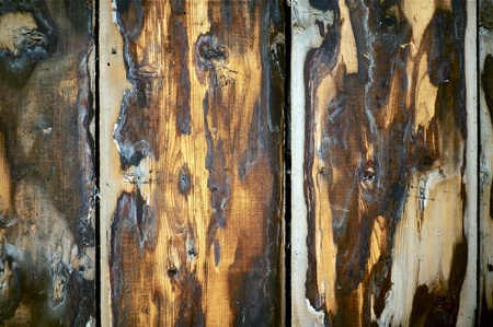 knotting: Rough Wood Wall Photo Background. Dirty Rough Vertical Planks - Closeup.