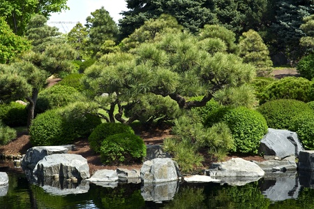 mugo: Botanic Garden - Japanese Garden with Small Pond