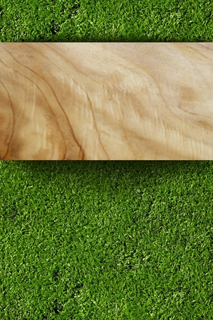 vertical garden: Grass and Wood Board ( Copy Space ) Background. Home and Garden Backgrounds Collection. Realistic Grass Pattern and Real Wood Plank. Vertical Background