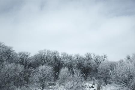 nebraska: Winter in Nebraska