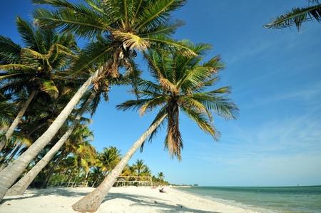 florida beach: Key West Florida. Main Beach, South Beach. USA
