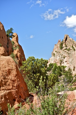 Summer in Colorado. Garden of the Gods. Summer in the Rockies. Vertical Photo. Nature Photo Collection. photo