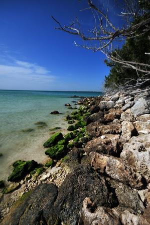 honda: Bahia Honda Rocky Beach. Florida Keys USA. Vertical Photo
