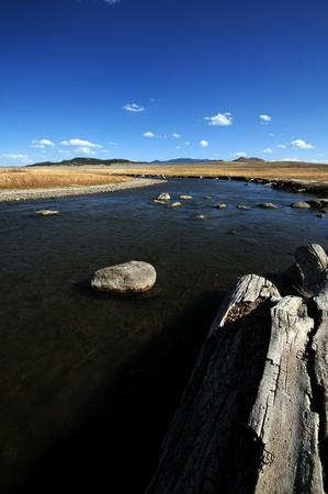 south platte river: South Platte River. Colorado Plains. Portrait Photo