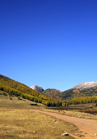 colorado landscape: Pike Forest - Colorado Landscape with Pikes Peak  Autumn in the Colorado  Clear Blue Sky  Colorado Photo Collection Stock Photo